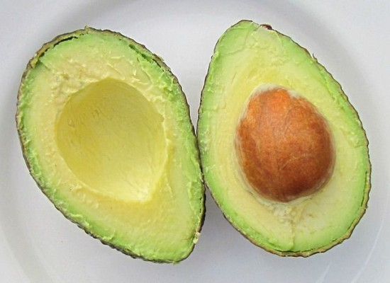 Avocado_small